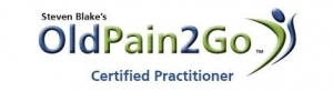 old pain 2 go logo